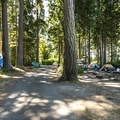 Salt Creek Recreation Area Campground.- Salt Creek Recreation Area Campground