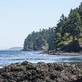 View east of the Strait of Juan de Fuca from Tongue Point.- Tongue Point