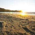 Crescent Beach.- Crescent Beach + RV Park