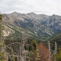 Above 8,200 feet the trail fades into the landscape. Hikers have to negotiate steep, forested hillsides to reach the upper alpine basins. This is a view partway up that climb.- North Fork of the Big Wood