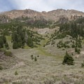 Several huge avalanche paths keep large sections of the canyon free of permanent pine and fir trees.- North Fork of the Big Wood