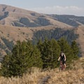 A biker hits the ridge above the steepest section of the Bear Gulch Trail.- Bear Gulch to Parker Gulch