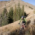 After a brief rest and layer change, a mountain biker begins the long, fast descent into Parker Gulch.- Bear Gulch to Parker Gulch