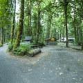 Elwha Campground.- Elwha Campground