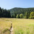 Humes Ranch meadow.- Elwha River Trail, Goblin Gates + Humes Ranch Loop