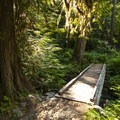 Elwha River Loop Trail.- Elwha River Trail, Goblin Gates + Humes Ranch Loop