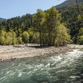 Elwha River alongside Altair Campground.- Altair Campground