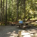 Typical campsite at Heart O' the Hills Campground.- Heart O' the Hills Campground