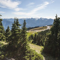 View of the Hurricane Ridge Visitor Center.- Klahhane Ridge Trail + Sunrise Point