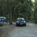 Typical campsite at Dungeness Recreation Area Campground.- Dungeness Recreation Area Campground
