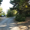 Dungeness Recreation Area Campground.- Dungeness Recreation Area Campground