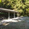 Group Camp picnic shelter at Dungeness Recreation Area Campground.- Dungeness Recreation Area Campground
