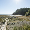 Dungeness Spit and Dungeness Bay.- Dungeness Spit