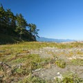 Dungeness Spit.- Dungeness Spit