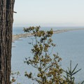 View of Dungeness Spit from a viewing platform in Dungeness Recreation Area.- Dungeness Spit