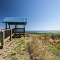 Viewing platform at Dungeness Landing.- Dungeness Landing County Park