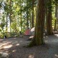 Typical campsite at Sequim Bay State Park Campground.- Sequim Bay State Park Campground