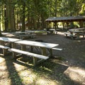 Day use picnic area at Sequim Bay State Park.- Sequim Bay State Park Campground