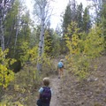 Within the first mile or so you will encounter aspens that turn yellow and orange in the fall.- Bellas Lakes