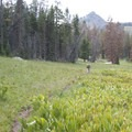 The trail passes through stretches of open terrain.- Bellas Lakes