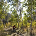 A fall ride to enjoy the colors is also a great idea.- Hyndman Creek + Hyndman Basin Hike