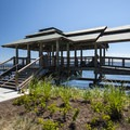 Picnic shelter at Jackson Tidal Park in Port Townsend.- Port Townsend Waterfront Parks