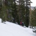 Skiing the well spaced glades on Waterhouse Peak.- Waterhouse Peak