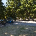 Typical campsite at Fort Worden State Park Upper Forest Campground.- Fort Worden State Park Beach Campground + Upper Forest Campground