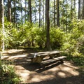 Hiker/biker campsite at Fort Worden State Park Upper Forest Campground.- Fort Worden State Park Beach Campground + Upper Forest Campground