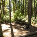Hiker/biker campsite at Fort Worden State Park Upper Forest Campground.- Fort Worden State Park Beach Campground + Upper Forest Campground