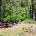 Typical campsite at Lakes Basin Campground.- Lakes Basin Campground