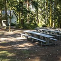 Day use picnic area at Fort Townsend State Park.- Fort Townsend State Park Campground