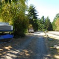 Campsites along the RV camp loop at Fort Townsend State Park Campground.- Fort Townsend State Park Campground