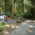 Typical campsite in the tent camping loop at Fort Townsend State Park Campground.- Fort Townsend State Park Campground