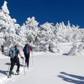 Snowshoers must head off the road to climb to the high point.- The Watchman Snowshoe