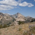 The broad open saddle at the end of the Pioneer Cabin Trail.- Johnstone Creek Hike