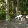Typical campsite at Fort Flagler State Park Upper Campground.- Fort Flagler State Park