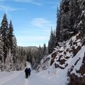Snowshoers take advantage of the gated East Rim Road.- Garfield Peak Snowshoe