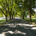 View west down East Evergreen Boulevard within Officer's Row National Historic District.- Vancouver National Historic Reserve + Officer's Row National Historic District