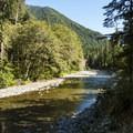 North Fork of the Skokomish River.- Skokomish River, Staircase Rapids Loop Trail