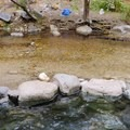 The spring and river.- Sykes Hot Springs