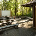 Amphitheater Skokomish Park South Camp.- Lake Cushman, Skokomish Park South Camp
