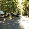 Skokomish Park South Camp.- Lake Cushman, Skokomish Park South Camp