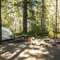 Walk-in campsite at Skokomish Park South Camp.- Lake Cushman, Skokomish Park South Camp