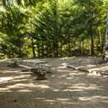 Typical campsite at Lake Cushman Resort + Campground.- Lake Cushman Resort + Campground