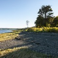 Hood Canal shoreline at Potlatch State Park.- Potlatch State Park