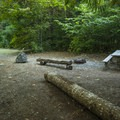 Typical campsite at Potlatch State Park Campground.- Potlatch State Park