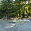 Potlatch State Park Campground North Loop.- Potlatch State Park Campground