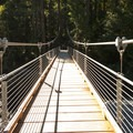 Suspension bridge crossing over the Skokomish River at Staircase Rapids.- Olympic National Park