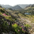 The view into the eastern end of Seven Lakes Basin from the High Divide Trail.- Olympic National Park